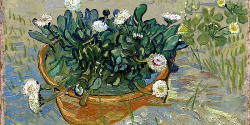 Van Gogh_Padova